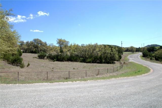 123 Calm Water, Canyon Lake, TX 78133 (#1668626) :: Forte Properties