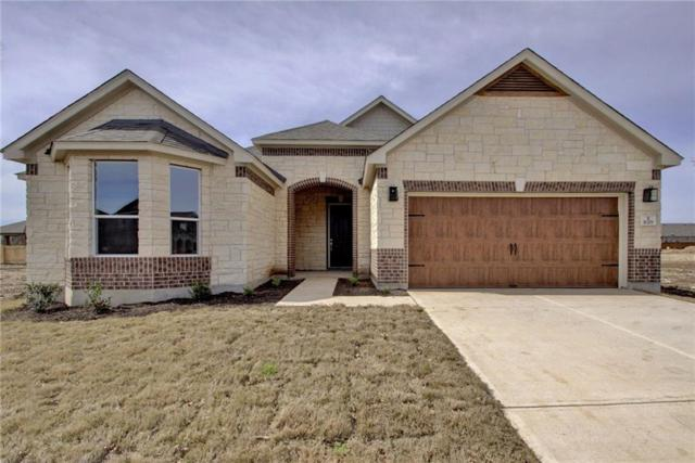 1029 Plano Ln, Leander, TX 78641 (#1671757) :: Papasan Real Estate Team @ Keller Williams Realty