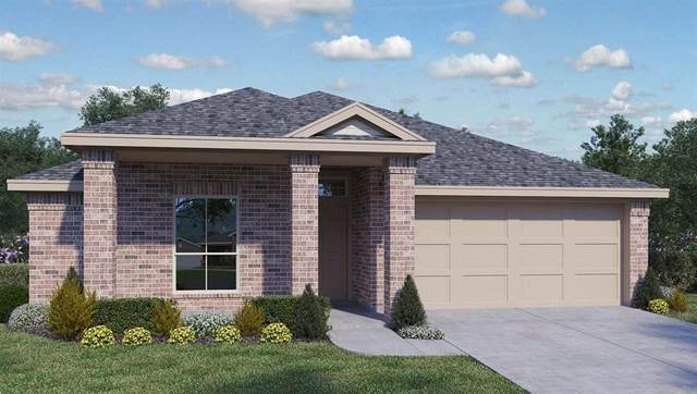 407 Marimoor Dr, Hutto, TX 78634 (#1678683) :: 12 Points Group
