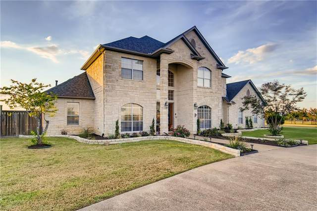 201 Comanche Cir, Hutto, TX 78634 (#1685312) :: The Perry Henderson Group at Berkshire Hathaway Texas Realty