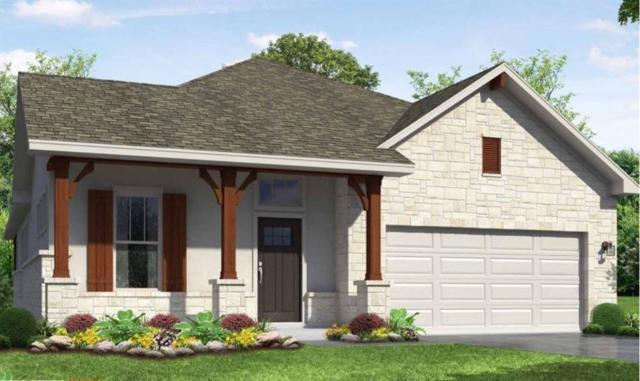 20308 Crested Caracara Ln, Pflugerville, TX 78660 (#1693474) :: Papasan Real Estate Team @ Keller Williams Realty