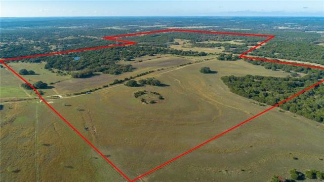 391 County Road 4717, Kempner, TX 76539 (#1695603) :: Papasan Real Estate Team @ Keller Williams Realty