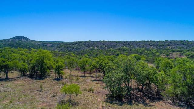 1501 Homer Young Rd, Fredericksburg, TX 78624 (#1700400) :: The Perry Henderson Group at Berkshire Hathaway Texas Realty
