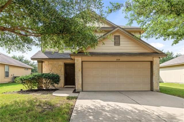 1228 Twin Cv, Kyle, TX 78640 (#1710892) :: Ben Kinney Real Estate Team