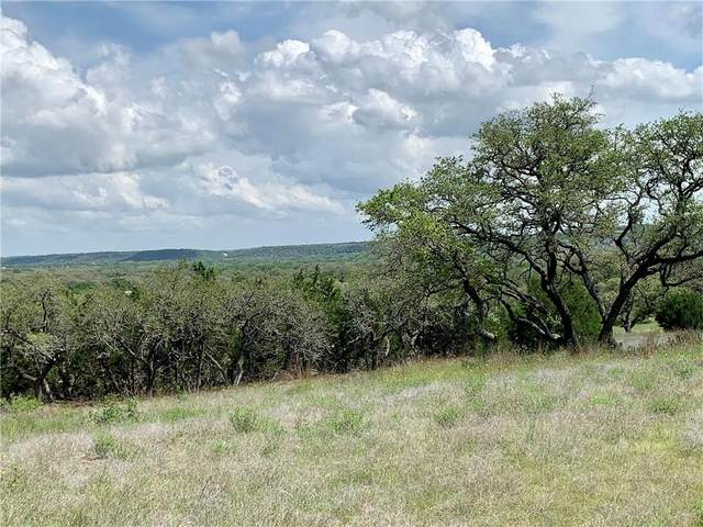 24 Driftwood Valley Trl, Driftwood, TX 78619 (#1712397) :: Papasan Real Estate Team @ Keller Williams Realty