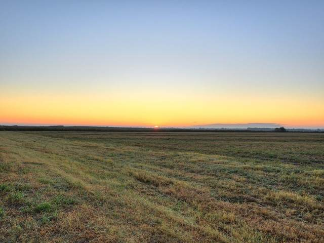 000 Fm 3061 (Lot 3 & 4), Thorndale, TX 76577 (#1713028) :: 12 Points Group