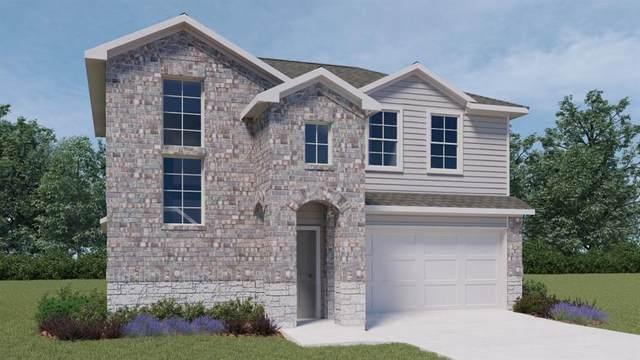 805 Adler Way, San Marcos, TX 78666 (#1736253) :: Azuri Group   All City Real Estate