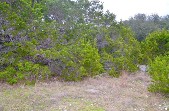 22312 Briarcliff Dr, Spicewood, TX 78669 (#1742887) :: Elite Texas Properties