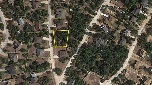 10105 Janet Loop, Dripping Springs, TX 78620 (#1769925) :: The Perry Henderson Group at Berkshire Hathaway Texas Realty