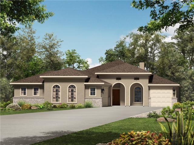 256 Premier Park Loop, Dripping Springs, TX 78620 (#1774226) :: 3 Creeks Real Estate