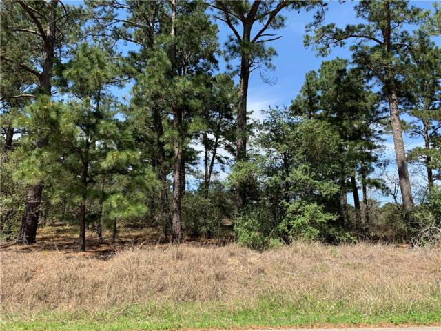 TBD Briar Forest, Bastrop, TX 78602 (#1810144) :: The Smith Team