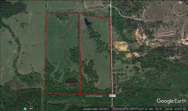 9540 Pleasant Ridge Rd, Other, TX 75763 (MLS #1812786) :: Vista Real Estate