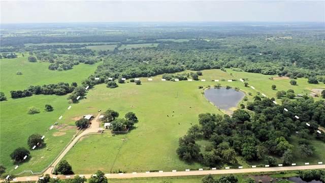 2698 Mule Creek, Harwood, TX 78632 (#1814655) :: Watters International