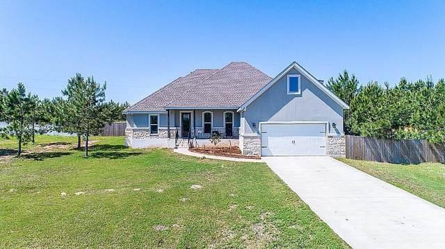 258 County Rd, Bastrop, TX 78602 (#1817401) :: Zina & Co. Real Estate