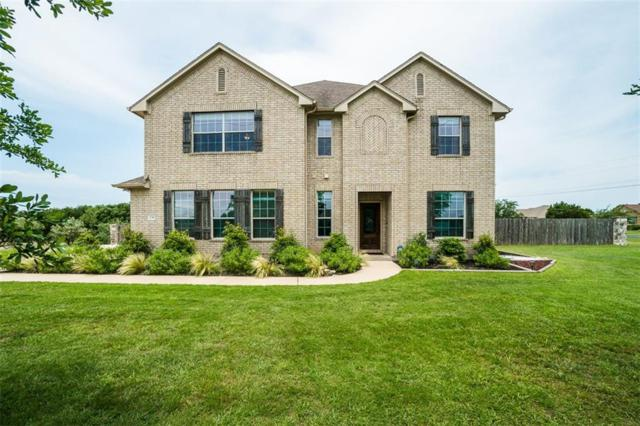 239 Hobby Horse, Liberty Hill, TX 78642 (#1821922) :: 12 Points Group