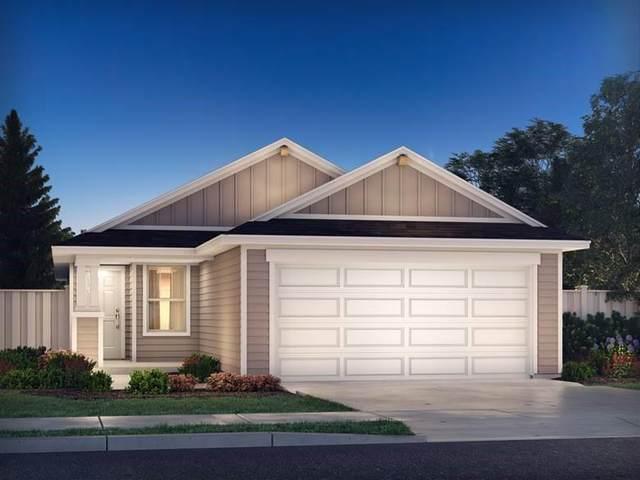 13006 Brave Tenderfoot Trl, Buda, TX 78610 (#1825382) :: Papasan Real Estate Team @ Keller Williams Realty