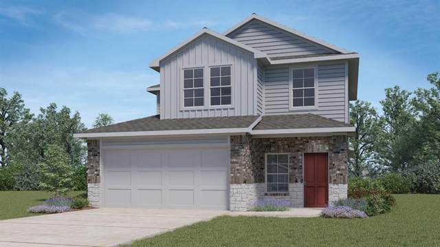 204 Skipping Stone Ln, San Marcos, TX 78666 (#1829781) :: RE/MAX Capital City