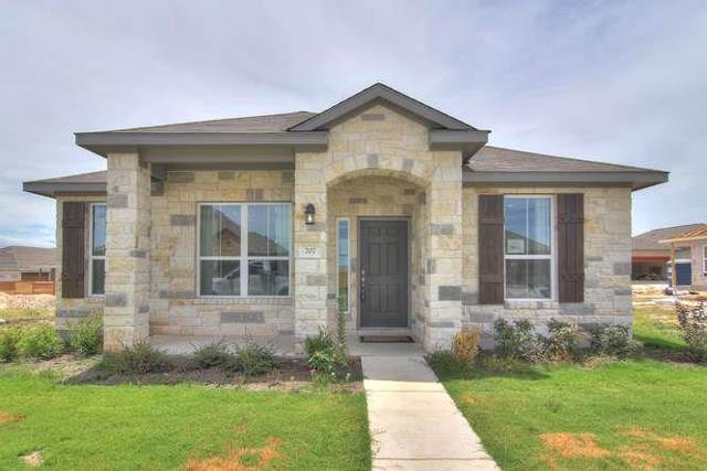 720 Coconut Grove St, Pflugerville, TX 78660 (#1830304) :: Kourtnie Bertram | RE/MAX River Cities