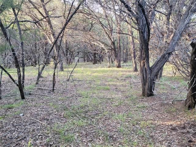 8122 Aztec Trl, Lago Vista, TX 78645 (#1835620) :: Papasan Real Estate Team @ Keller Williams Realty