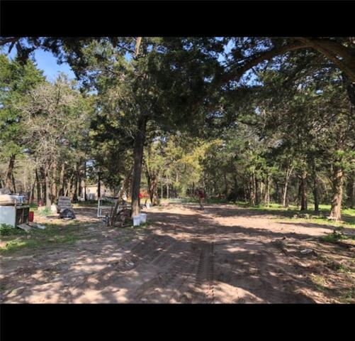 120 Little Ranch Rd, Red Rock, TX 78662 (#1841732) :: Ben Kinney Real Estate Team