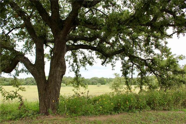 0 County Road 313, Rockdale, TX 76567 (#1850829) :: Realty Executives - Town & Country