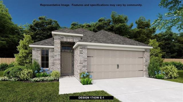 533 Lacey Oak Loop, San Marcos, TX 78666 (#1854008) :: 3 Creeks Real Estate