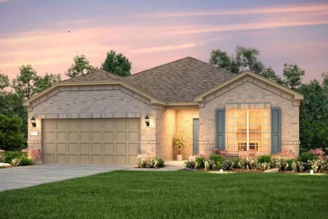 206 Rockport St, Georgetown, TX 78633 (#1854430) :: Ana Luxury Homes