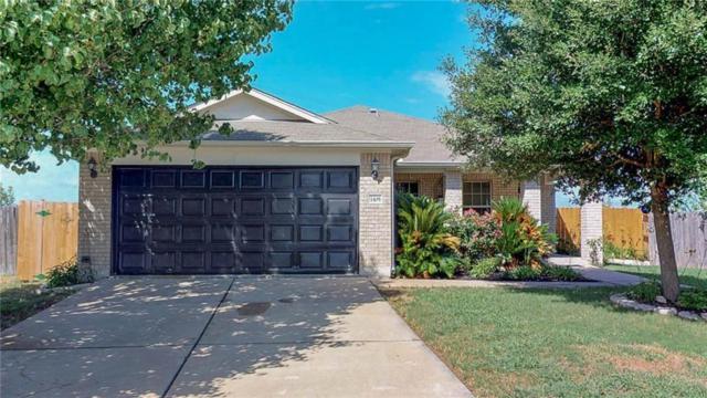 1105 Meagan Cv, Hutto, TX 78634 (#1858917) :: Forte Properties