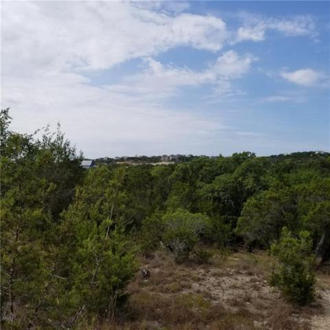 10627 Lake Park Dr, Dripping Springs, TX 78620 (#1864569) :: The Smith Team