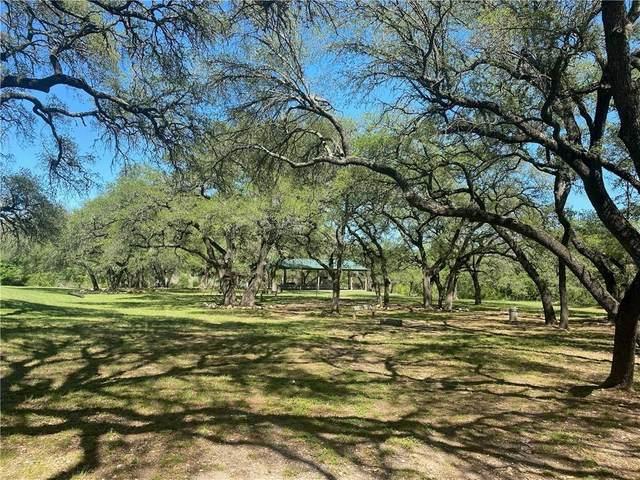 333 Ash Juniper Way, Bertram, TX 78605 (#1866758) :: Sunburst Realty
