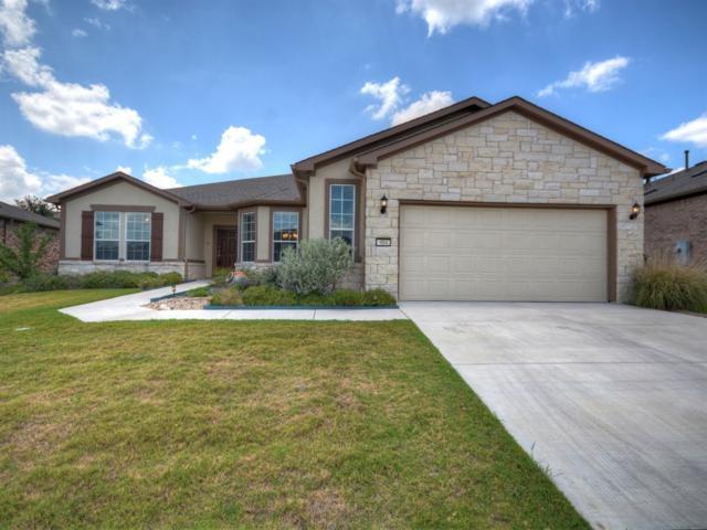 904 Major Peak Ln, Georgetown, TX 78633 (#1873303) :: Watters International