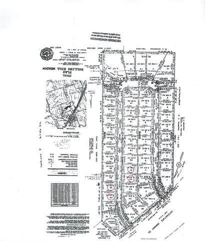 366 Meadow Valley Loop, Jarrell, TX 76537 (#1873894) :: Papasan Real Estate Team @ Keller Williams Realty