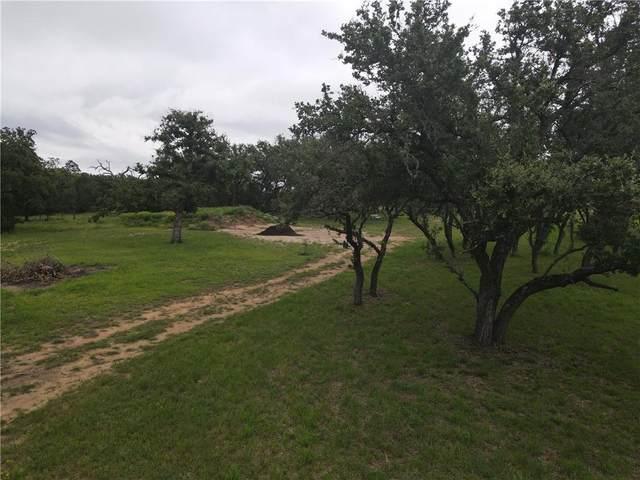 762 Morning Dew Dr, Round Mountain, TX 78663 (#1878110) :: Papasan Real Estate Team @ Keller Williams Realty