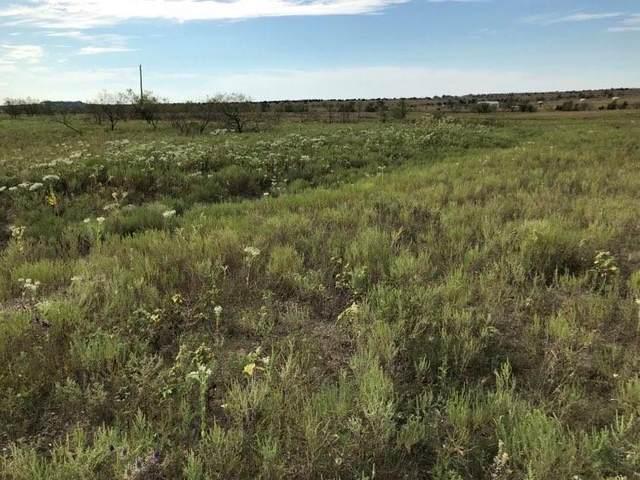 TBD County Road 2323, Lampasas, TX 76550 (#1878199) :: R3 Marketing Group