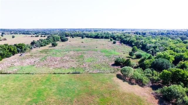 000 Reed Creek Dr, Harwood, TX 78632 (#1882583) :: KW United Group