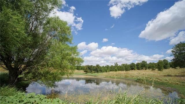 TBD County Road 208, Cameron, TX 76520 (MLS #1882985) :: Vista Real Estate