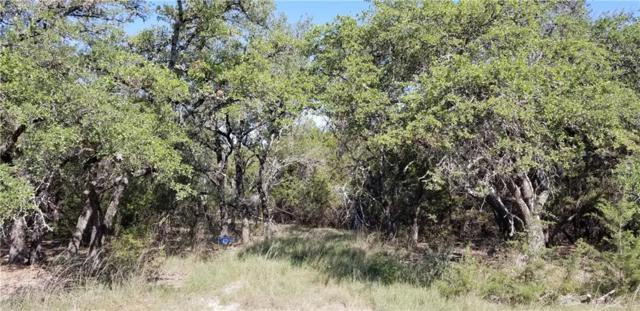 275 Rough Hollow, Johnson City, TX 78636 (#1891561) :: The Perry Henderson Group at Berkshire Hathaway Texas Realty