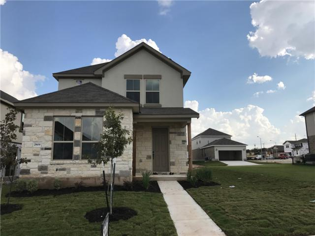 2909 Barbed Wire St, Round Rock, TX 78664 (#1898924) :: The ZinaSells Group