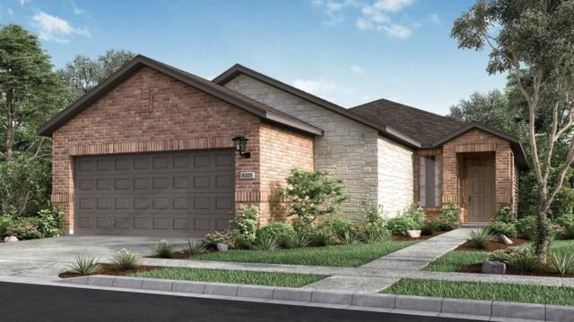 3237 Aurelia Ln, Round Rock, TX 78665 (#1898956) :: Forte Properties