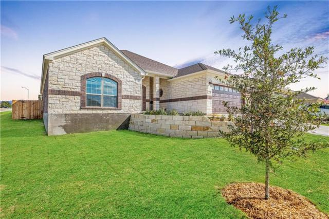 420 Western Sky Trl, Jarrell, TX 76537 (#1905437) :: Zina & Co. Real Estate