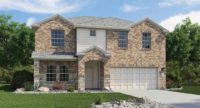 163 Tanzanite Cir, Buda, TX 78610 (#1906491) :: NewHomePrograms.com LLC