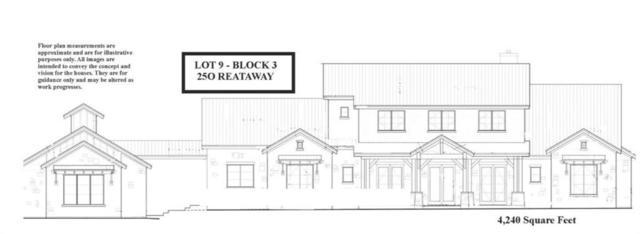 250 Reataway St, Dripping Springs, TX 78620 (#1909179) :: Watters International