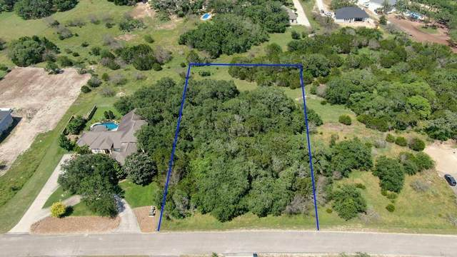 210 Falling Hls, New Braunfels, TX 78132 (#1924358) :: The Perry Henderson Group at Berkshire Hathaway Texas Realty