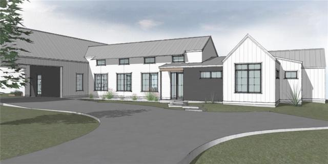 175 Terra Scena Trl, Dripping Springs, TX 78620 (#1925465) :: Papasan Real Estate Team @ Keller Williams Realty