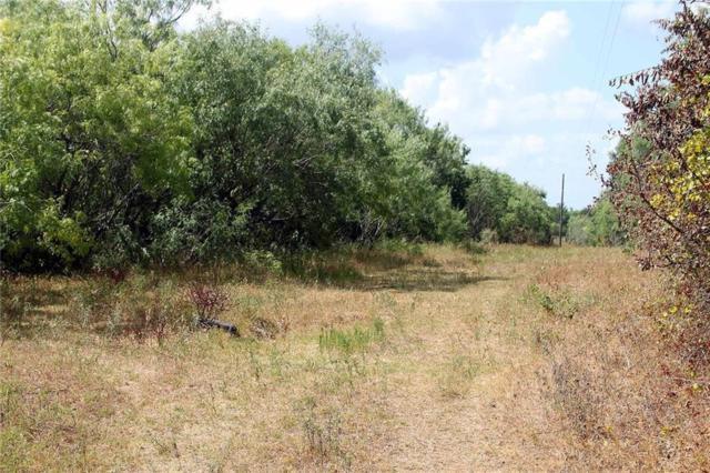 2565 Silver Mine Rd, Dale, TX 78616 (#1947685) :: Douglas Residential