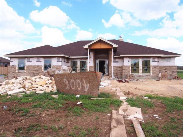4006 Joe Bozon Dr, Salado, TX 76571 (#1951949) :: Austin Portfolio Real Estate - The Bucher Group