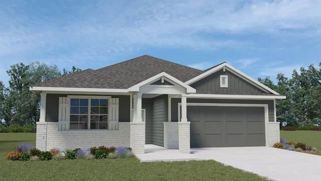 119 Big Cypress Bayou Rd, Hutto, TX 78634 (#1956907) :: The Perry Henderson Group at Berkshire Hathaway Texas Realty