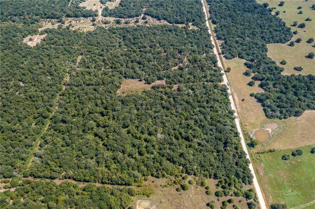000 County Road 411, Lexington, TX 78947 (#1957772) :: Papasan Real Estate Team @ Keller Williams Realty