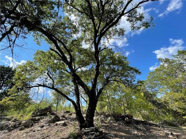 Lot 92 Harvey Ct, Austin, TX 78734 (#1983227) :: The Summers Group