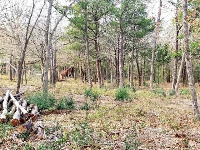 112 Woods View Ct, Cedar Creek, TX 78612 (#1999830) :: Papasan Real Estate Team @ Keller Williams Realty